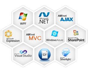Microsoft ASP .Net Development